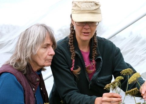 BC Eco Seed Coop Heather Pritchard, Jen Cody seeds