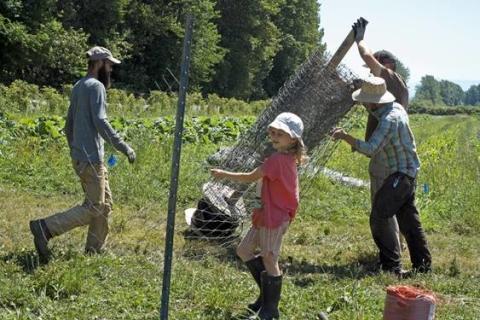 farming at Close to Home Organic farm co-operative