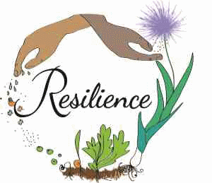 COABC 2016 Resilience