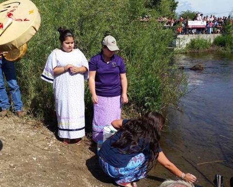 Pauline Terbasket, Executive Director of the Okanagan Nation Alliance releases Okanagan Sockeye Fry into Shingle Creek as part of a ceremony to restore salmon.
