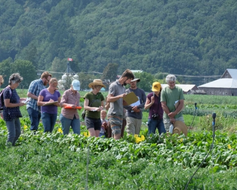 BC Seed Trials Field Day in Chilliwack