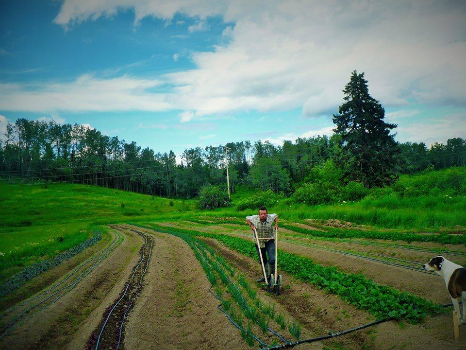Sweat Farming at Hope Farm Organics