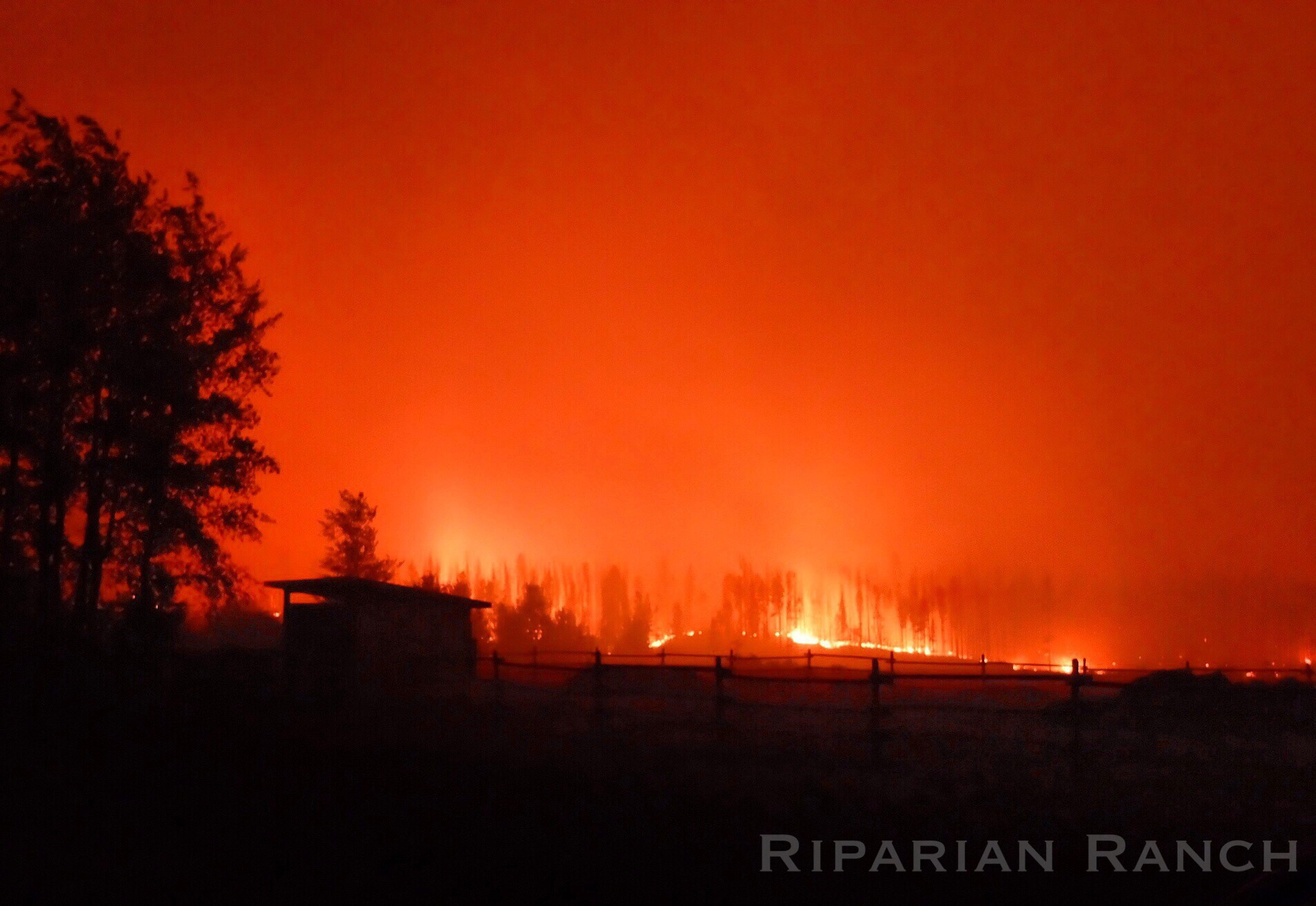 Wildfires scour the landscape around Riparian Ranch