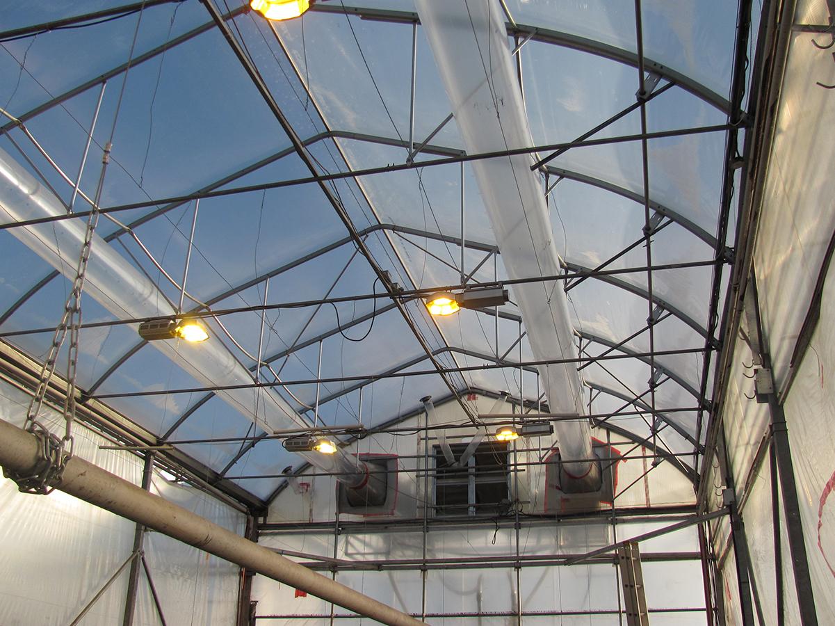 Darcy Smith – British Columbia Organic Grower